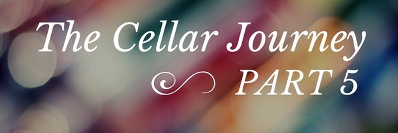 As I Swam Towards The Door - The Cellar Journey Part 5