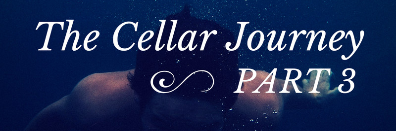 The Cellar Journey Part 3