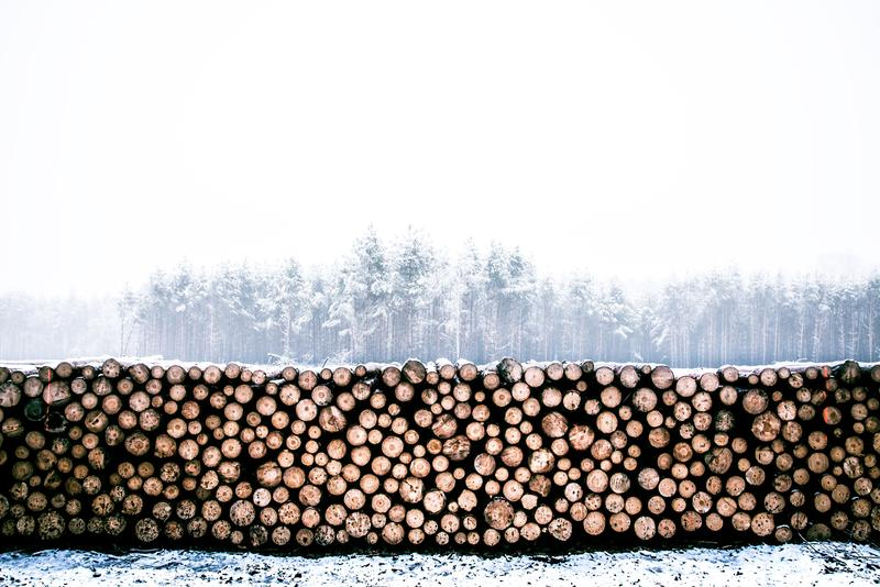 Numerous wood logs stacked