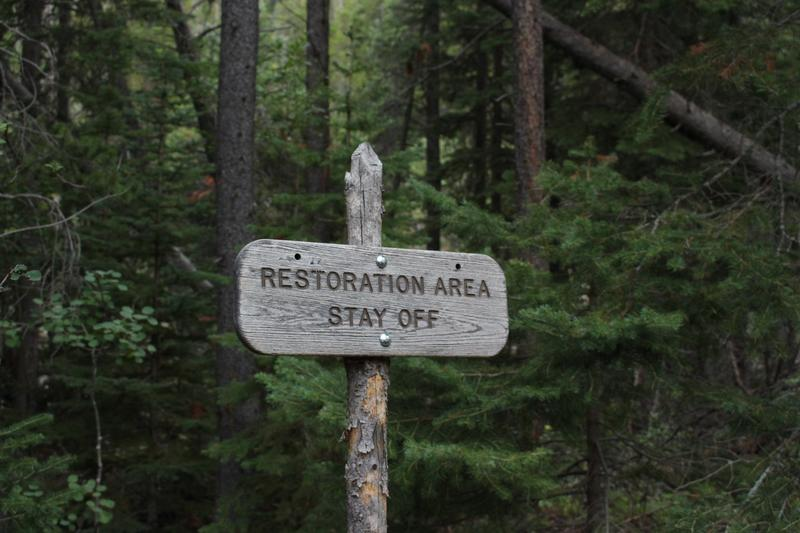 restoration area sign forest